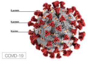 Aktuell: SARS-CoV-2 Diagnostik